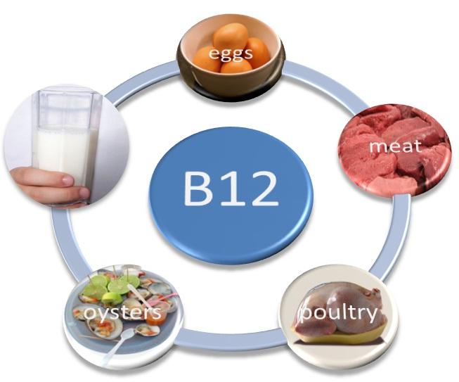 Βιταμίνη Β12 , μνήμη και νευρικό σύστημα
